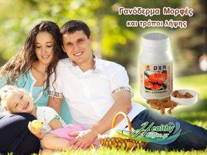 ganoderma-morfes