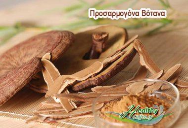 prosarmogona-botana